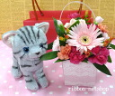 Seasonal flower milk BOX flower arrangements ( flower ) ( chiton ) &kitten American shorthair plush set FL-AR-272