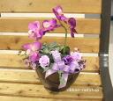 紫色蝴蝶兰,(人工) 丝网花插花 fl-sf-208