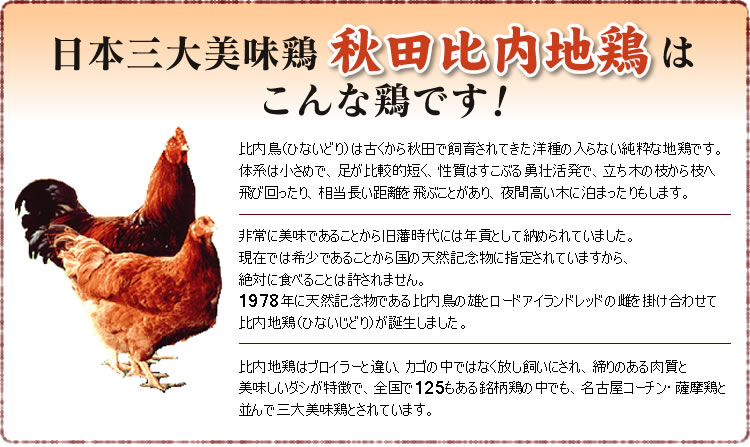 秋田比内地鶏とは