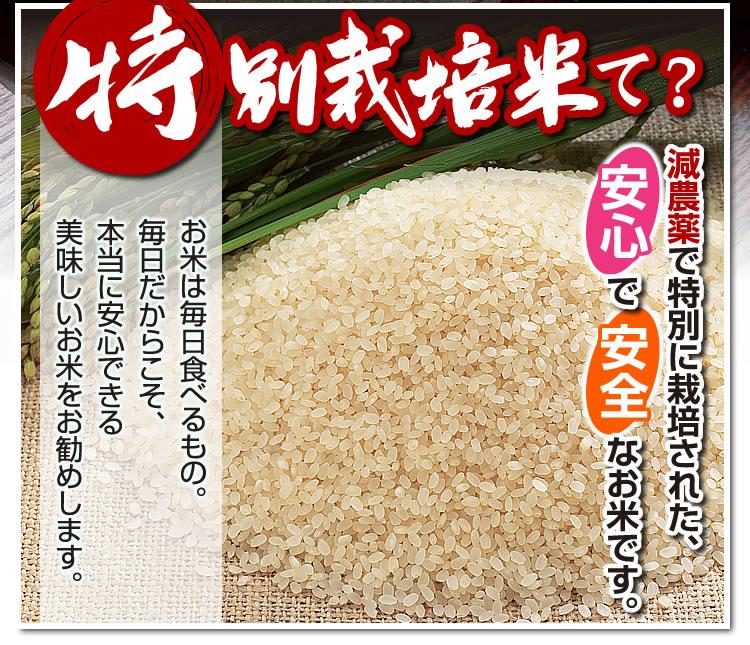 特別栽培米て?
