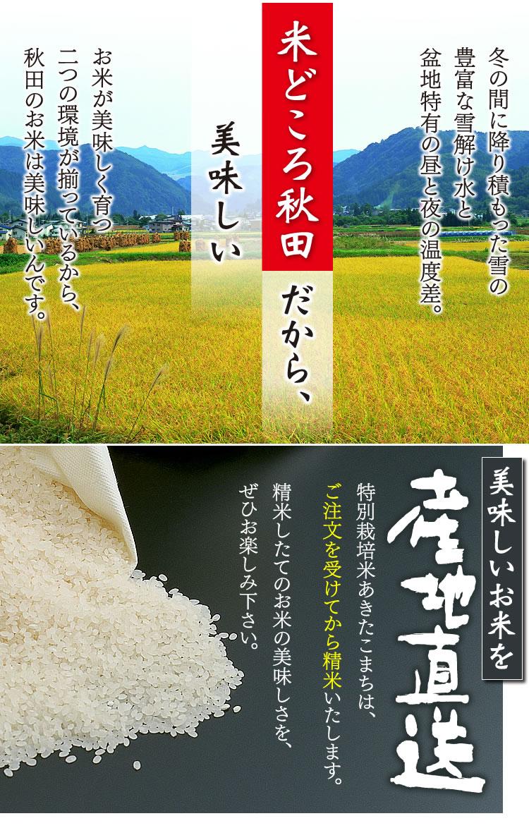 米どころ秋田だから、美味しい