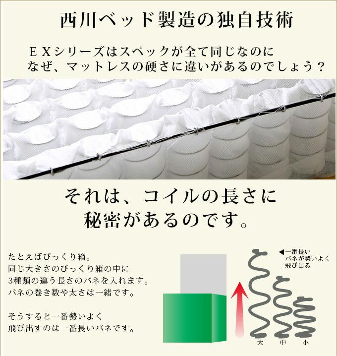 nsrc_hikaku01.jpg