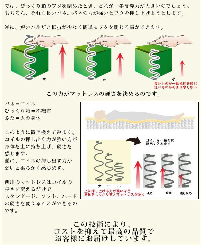 nsrc_hikaku02.jpg