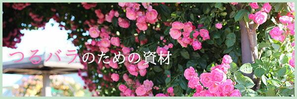 つるバラのためのトレリス