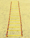 Super Lady, Estep Surer-Ladder e-step