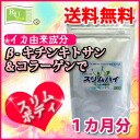 Review by ♪ diet Diet supplement beta-Chitosan high absorption スリムハイ 1 month 100g10P18Oct13 10% off