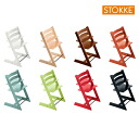 Regular dealer stokke stokke tripp trapp chair for Chaise tripp trapp