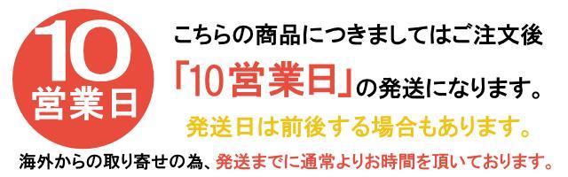 """10営業日発送"""""""