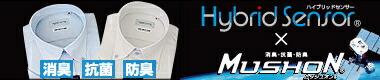 Hybrid Sensor(�ϥ��֥�åɥ�����