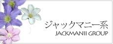 ジャックマニー系