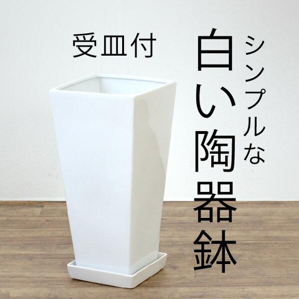 シンプルな 白い陶器鉢