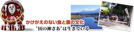 日本の米づくり百選の地 宮崎県えびの市産 えびのひのひかり 5kg