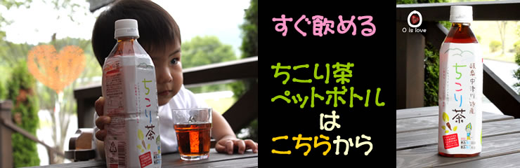 It is easy to drink anywhere anytime! A special product of Gifu that was authorized to ちこり tea plastic bottle ● Hida, Mino comfort!