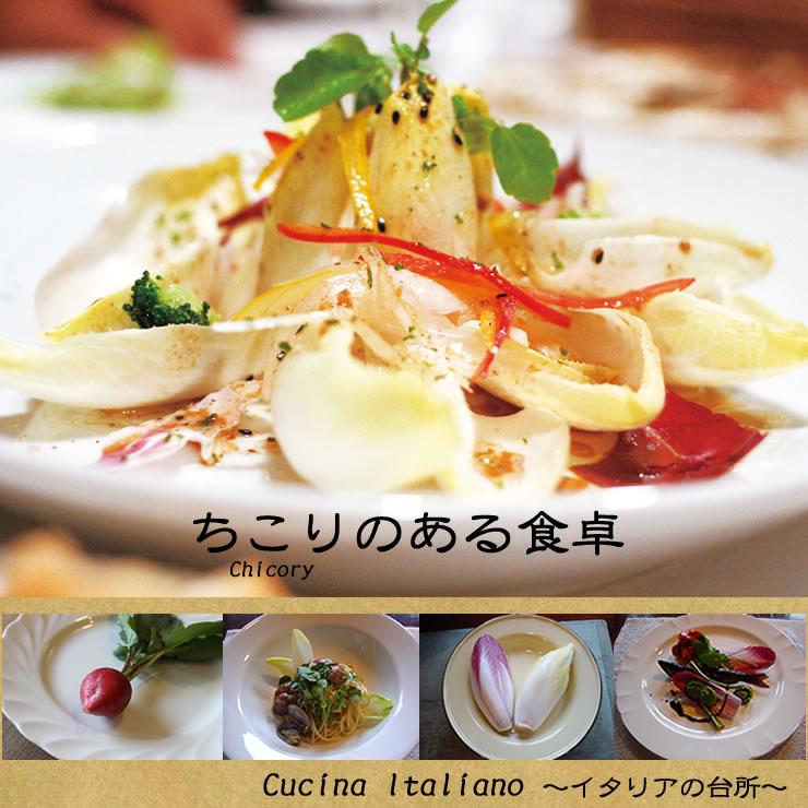 オシャレな食卓を演出する野菜「国産ちこり」国産チコリ(アンディーブ)