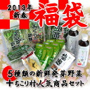 Sachiko baby-sitter popularity quotient sprouting vegetables set of 5 types of salad items & Cosmo