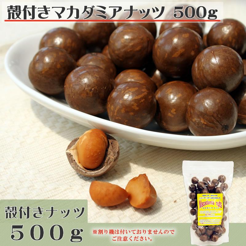 殻付きマカダミアナッツ500g
