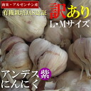 Organic cultivation JAS authentication ★ Andean purple garlic 1 kg-ギアリンクス soy sauce 1 L gifts