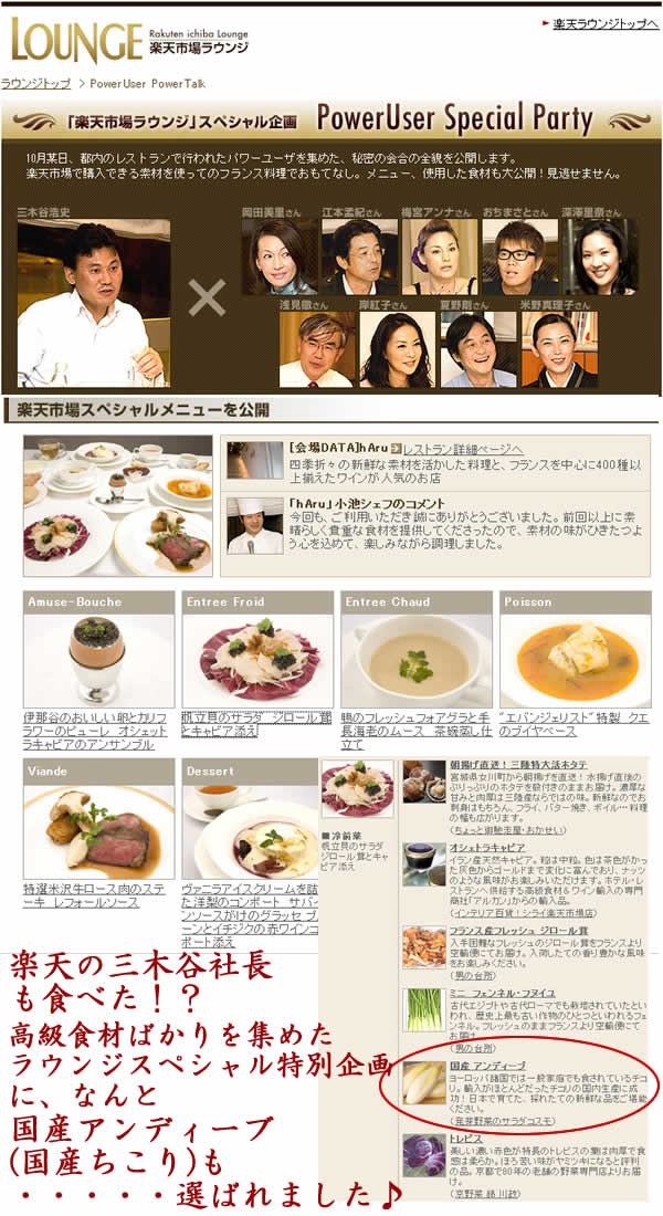 Endive appearance domestic in Rakuten market lounge special limited plan