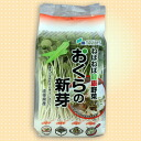 It's gooey healthy vegetables! Crunchy crunchy okra sprout (オクラスプラウト)-6 Pack
