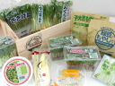 Country BOX with fresh fresh vegetable life ★ sprout vegetables set