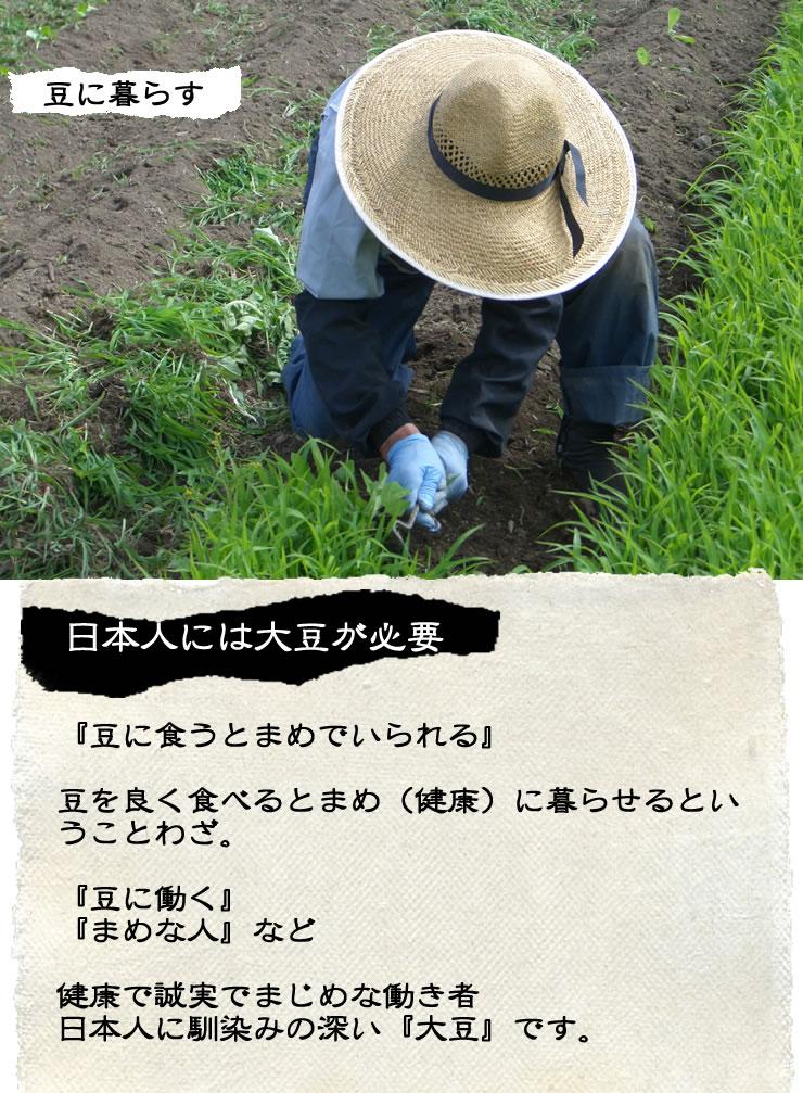 おつまみ発芽えだまめ枝豆国産発芽大豆をドライパックにしました40g×2パック入り