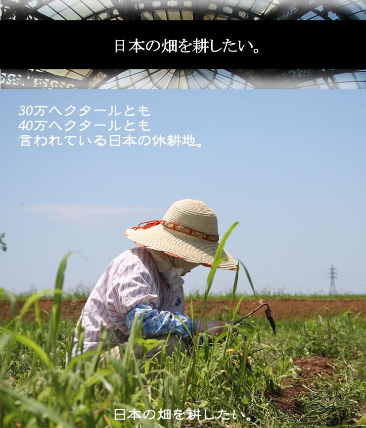 日本の畑を耕したい