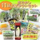 Fresh! Direct from the farm! Many times you can order-sample sprout products 11 vegetables set
