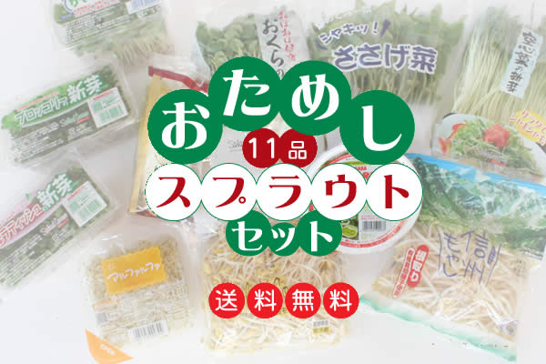 11 articles of trials plastic Uto vegetables set