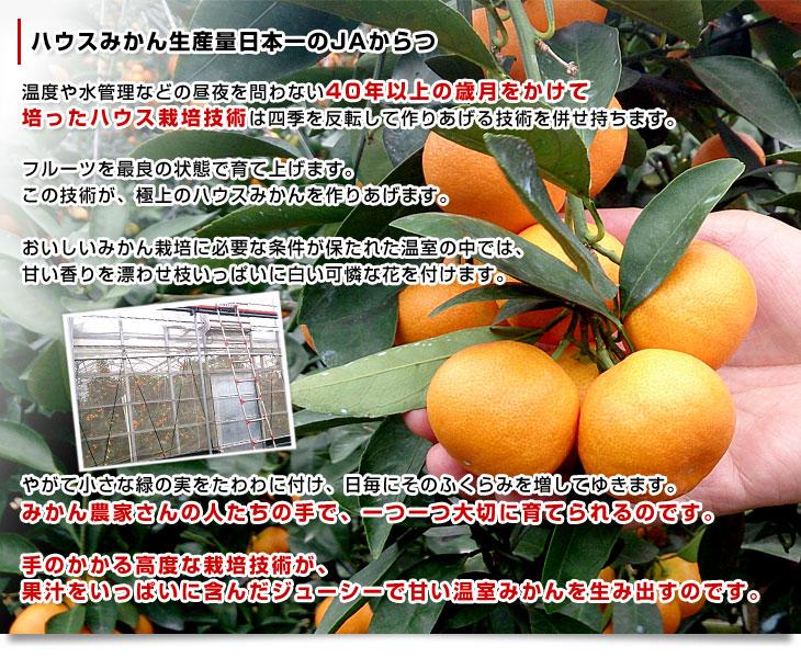 九州熊本県JAたまなの南関郷米2kg[H25年産新米](ヒノヒカリ/精米済み)