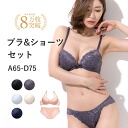Lace Bra Panties sets bra & shorts (BRA Bra sets Bashaw ブラショーツ passe BRA)