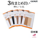 May take about a week to deliver for the 3 foot pair stockings サブリナグンゼ GUNZE stockings gunze pantyhose Black Black beige brown plain SABRINA support store and share stock