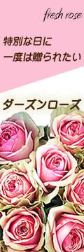 12本のバラ