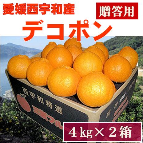 デコポン【贈答用】8kg(4kg×2箱)