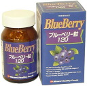 120 (180) *5 [Minami Hel sea foods] blueberry grain set Co., Ltd.
