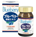 [J] 300 mg of blueberry extract grains *90