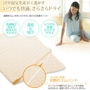 phiten (phiten) stars comfort 汗取ri kneeling pad (quick drying absorbing sweat) Aqua / semi yo543087