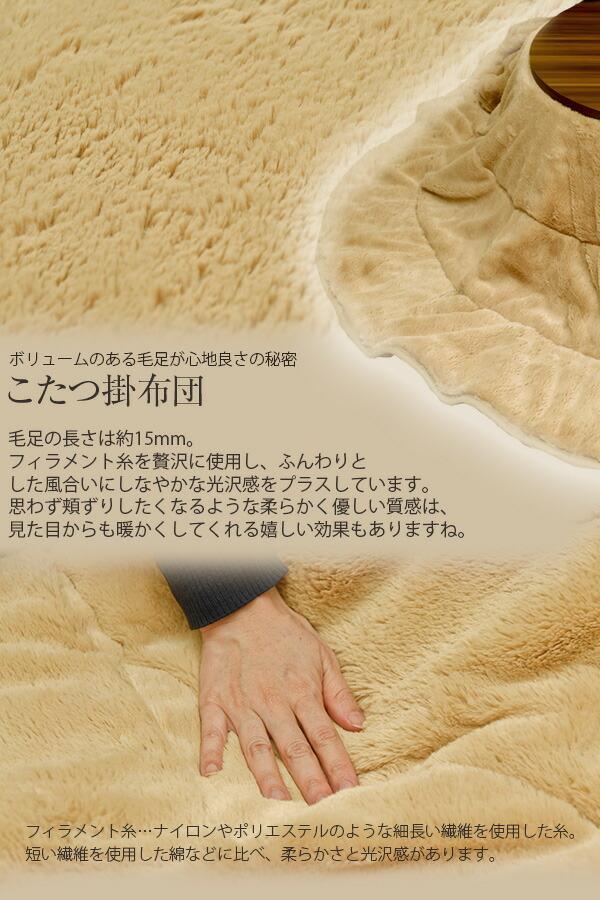 ��ӥåȥե������å����������ݤ����饰���åȡ��߷�100cm��RF-R100