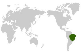 原産国と生産国