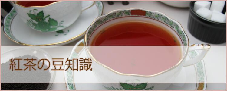 紅茶の豆知識
