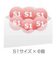 S1サイズ × 6個