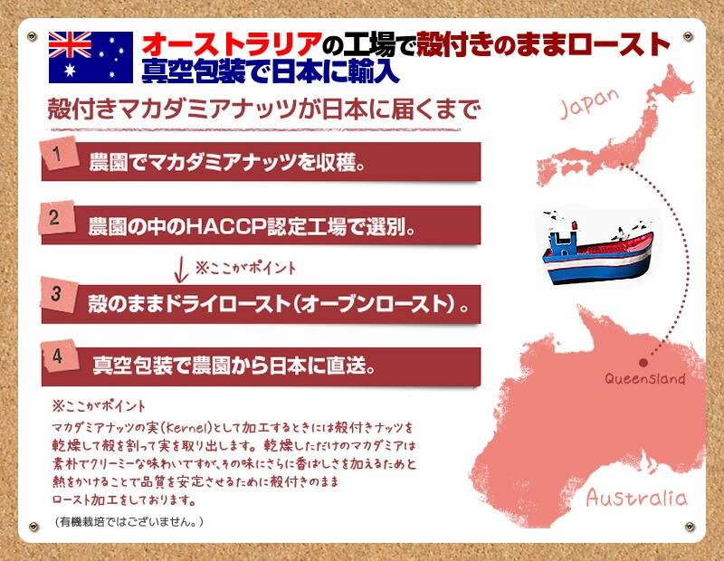 オーストラリアの工場で殻付きのままロースト/真空包装で日本に輸入