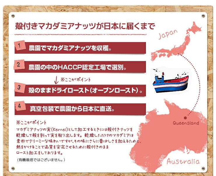 殻付きマカダミアナッツが日本に届くまで
