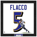 NFL Ravens # 5 Joe Flaco 20 Uniframe Photo File