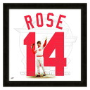 MLB Reds #14 Pete Rose 20x20 Uniframe Photo File