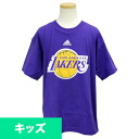 Adidas NBA Los Angeles Lakers Youth Full Primary Logo t-shirt (purple)