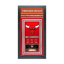 NBA Chicago Bulls Framed Championship Banner Photo File