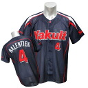 2013 Tokyo Yakult Swallows #4 Vladimir Valentin replica uniform sublimation print (visitor) Zett