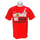 Reebok NHL Chicago Blackhawks 2013 Stanley Cup Champion t-shirt (red)