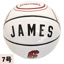 NBA heat #6 Revlon James jersey ball 7 ball SPALDING