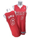 NBA heat #6 Revlon James Revolution Authentic uniform (2013 Pride) Adidas)
